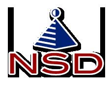 NS Développement Logo